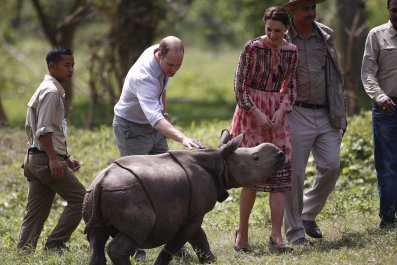 Duke and Duchess of Cambridge meet a rhino in India.
