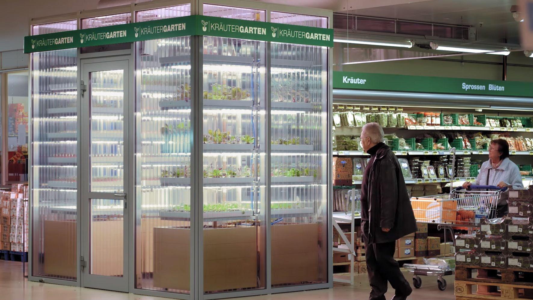 German Supermarket Turns Aisle Into Mini Farm