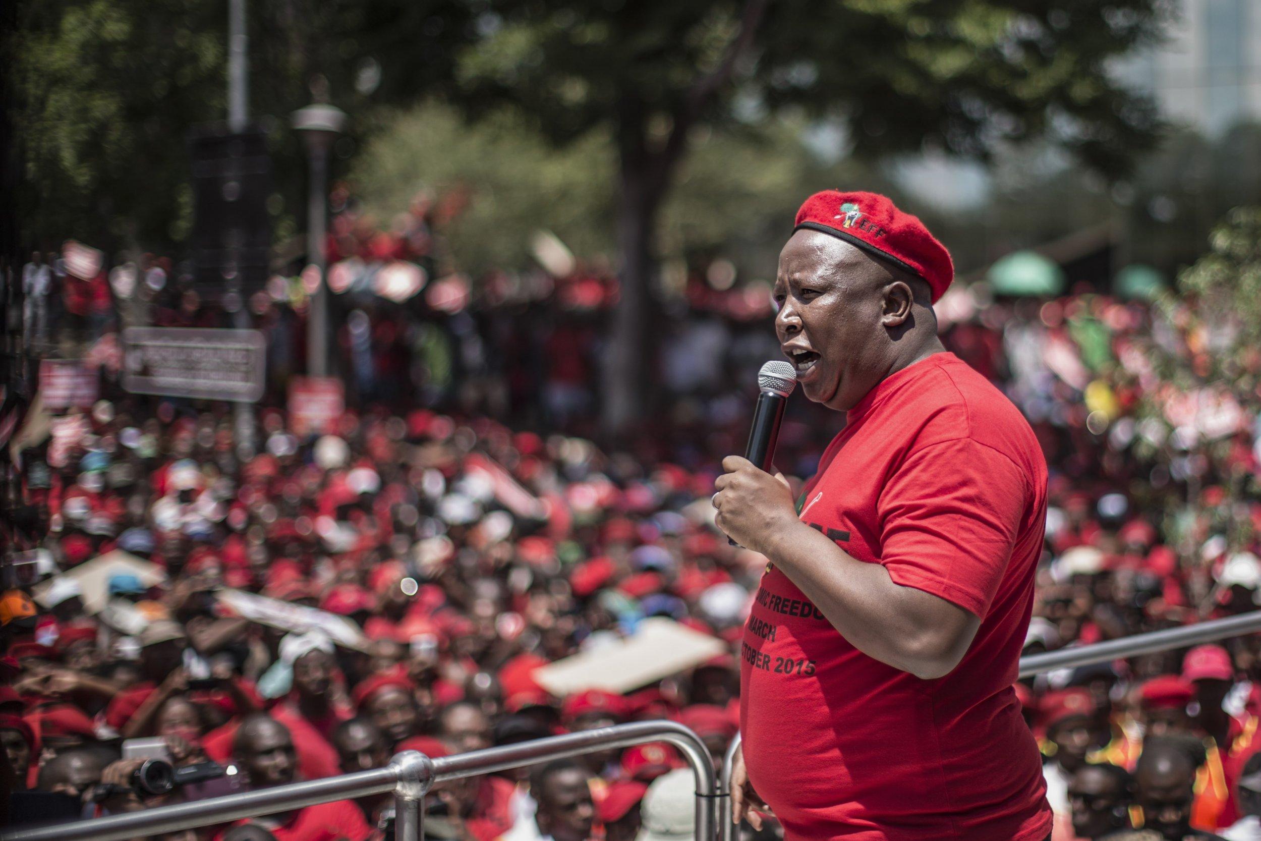 Julius Malema at an EFF rally.