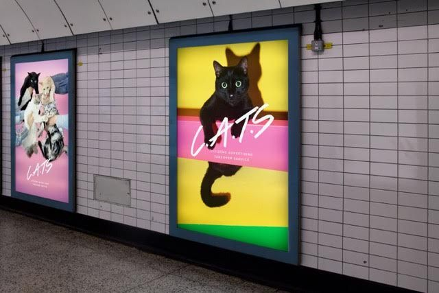 Cats London Underground