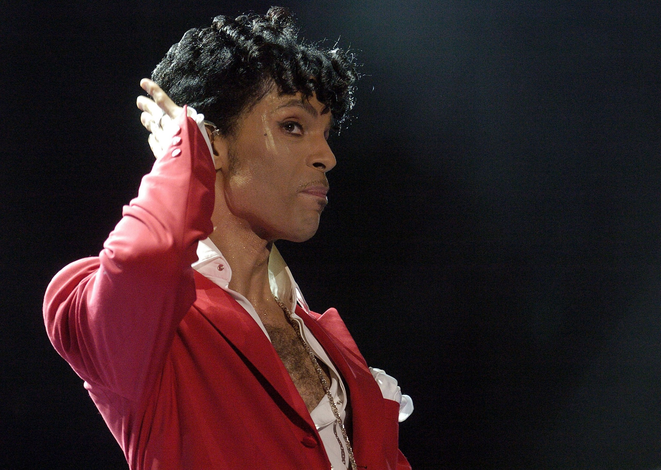 Prince in 2004