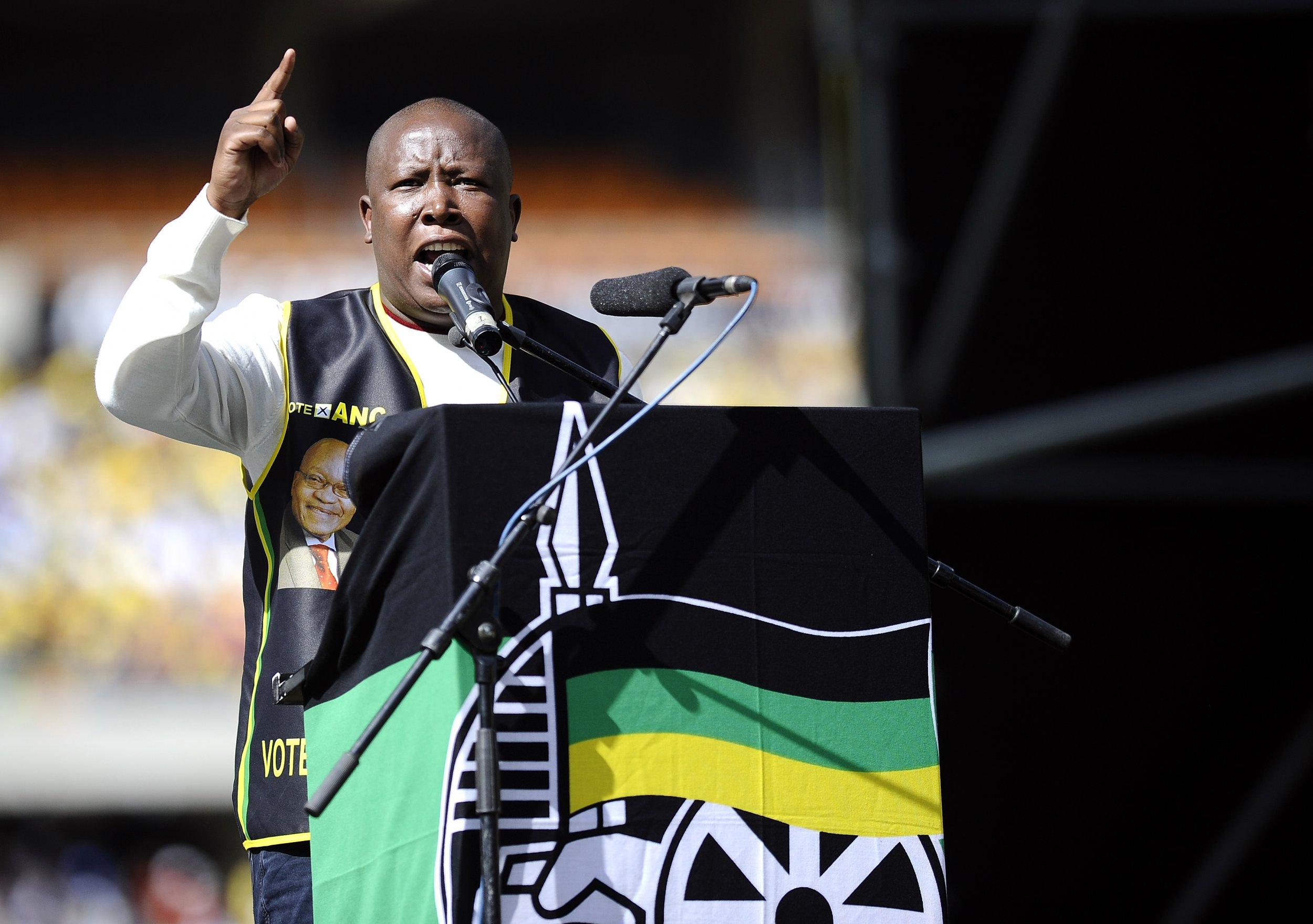 Julius Malema in the ANC.