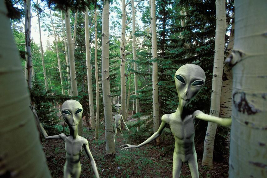 does extraterrestrial life really exist the search for extraterrestrial intelligence What are the odds that smart aliens exist in the universe  but scientific interest  in the topic of extraterrestrial intelligence, or et, truly soared in.