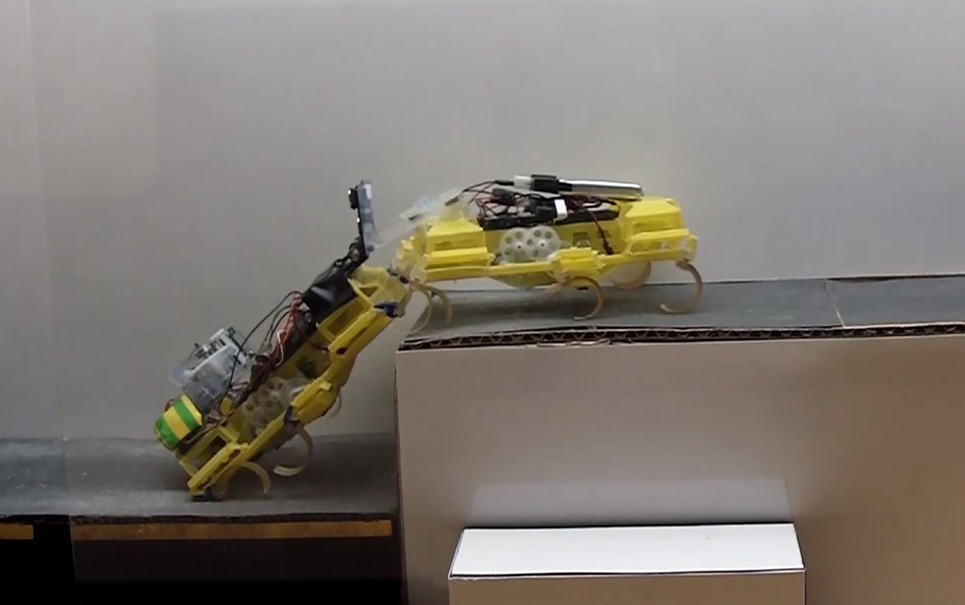 robots VelociRoACH cockroach insect robotics