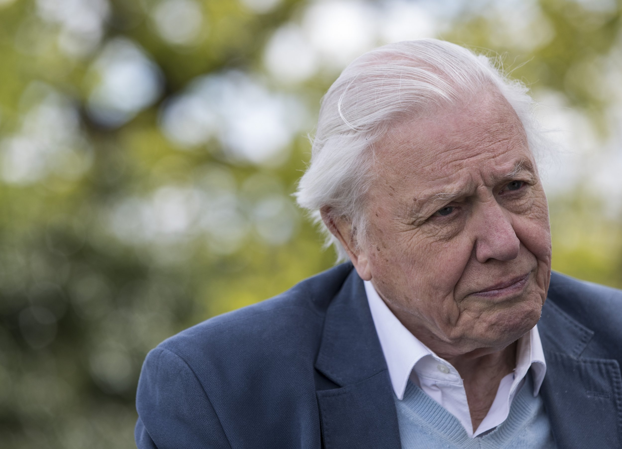Sir Attenborough