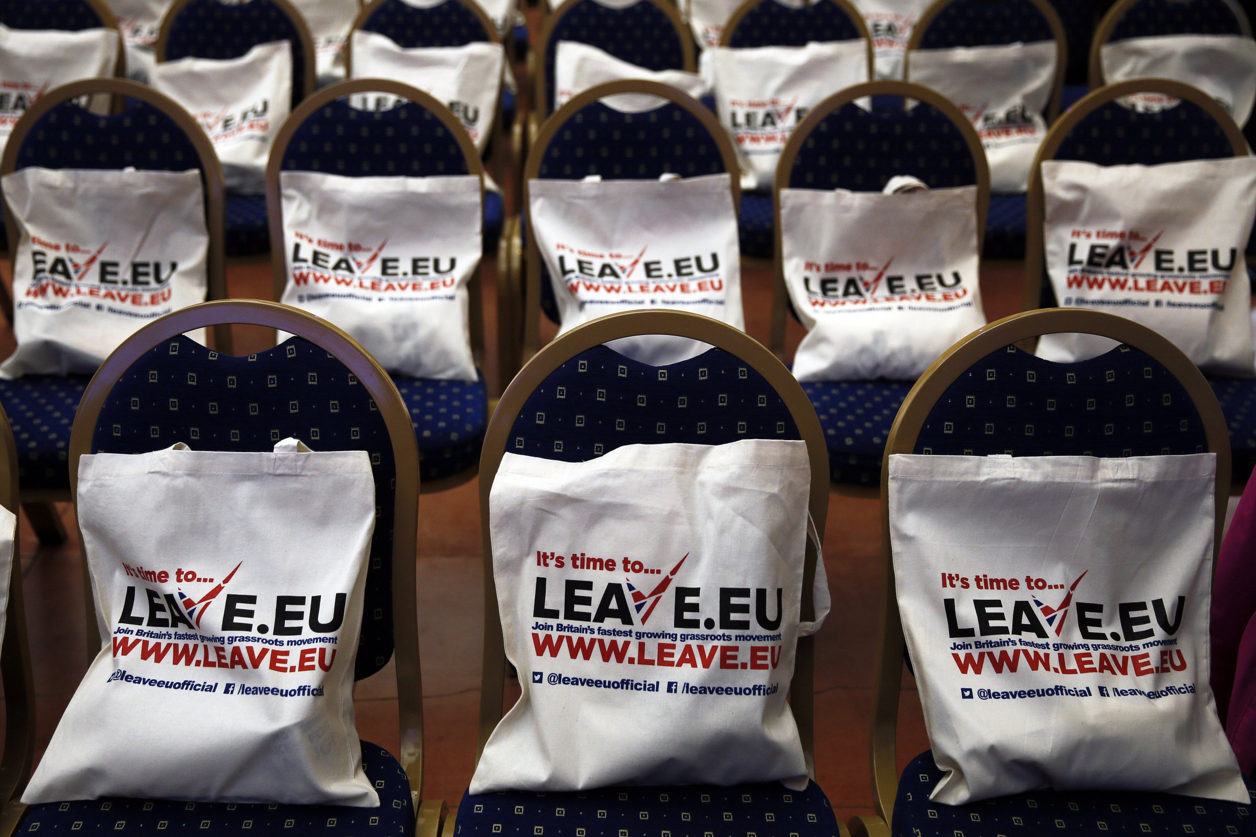 Leave.eu campaign bags