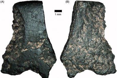 stone-tool