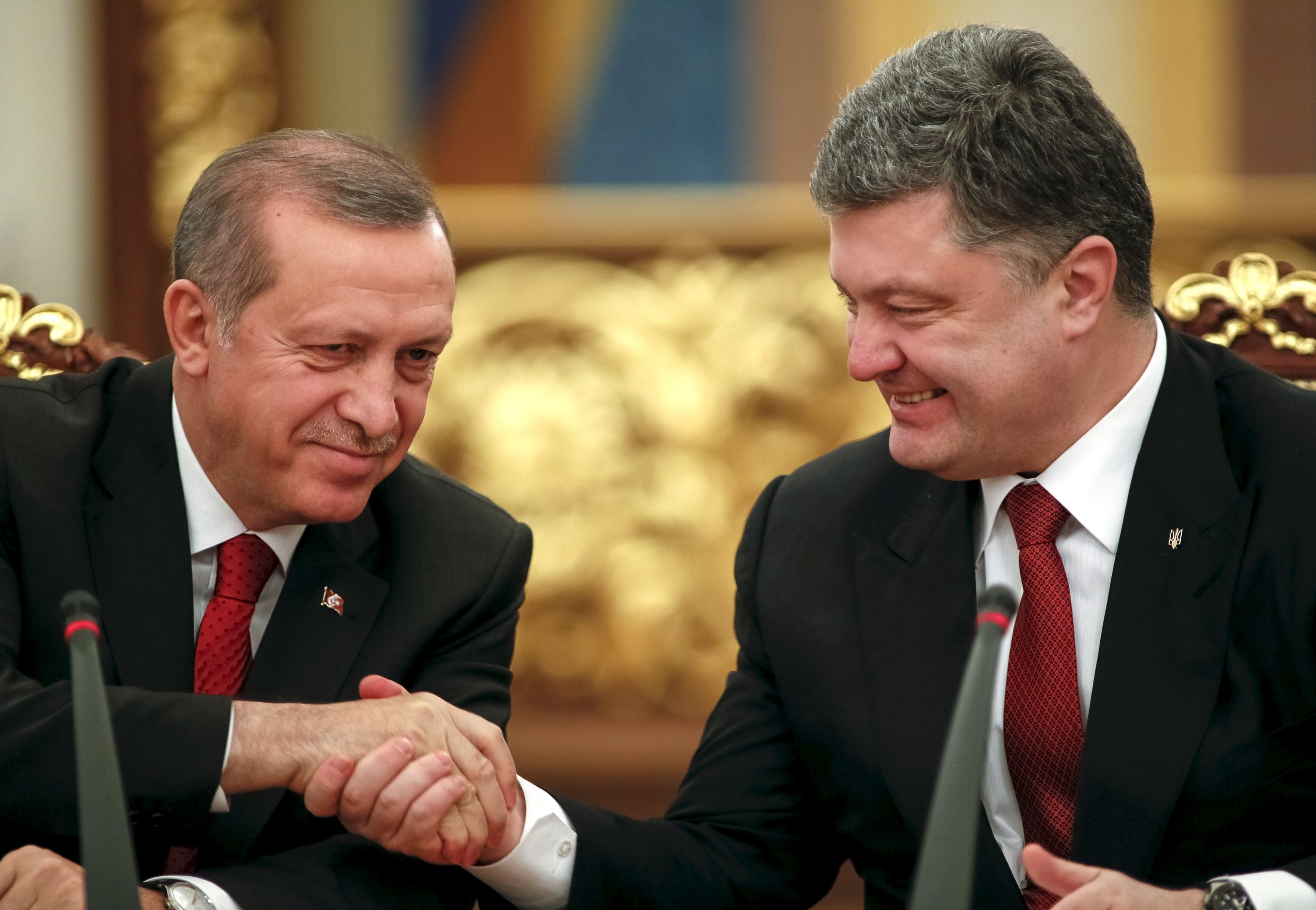 Erdogan and Poroshenko shake hands