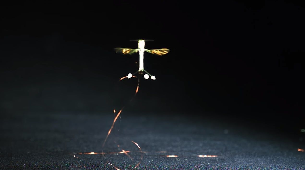 robot spy insect bee harvard static