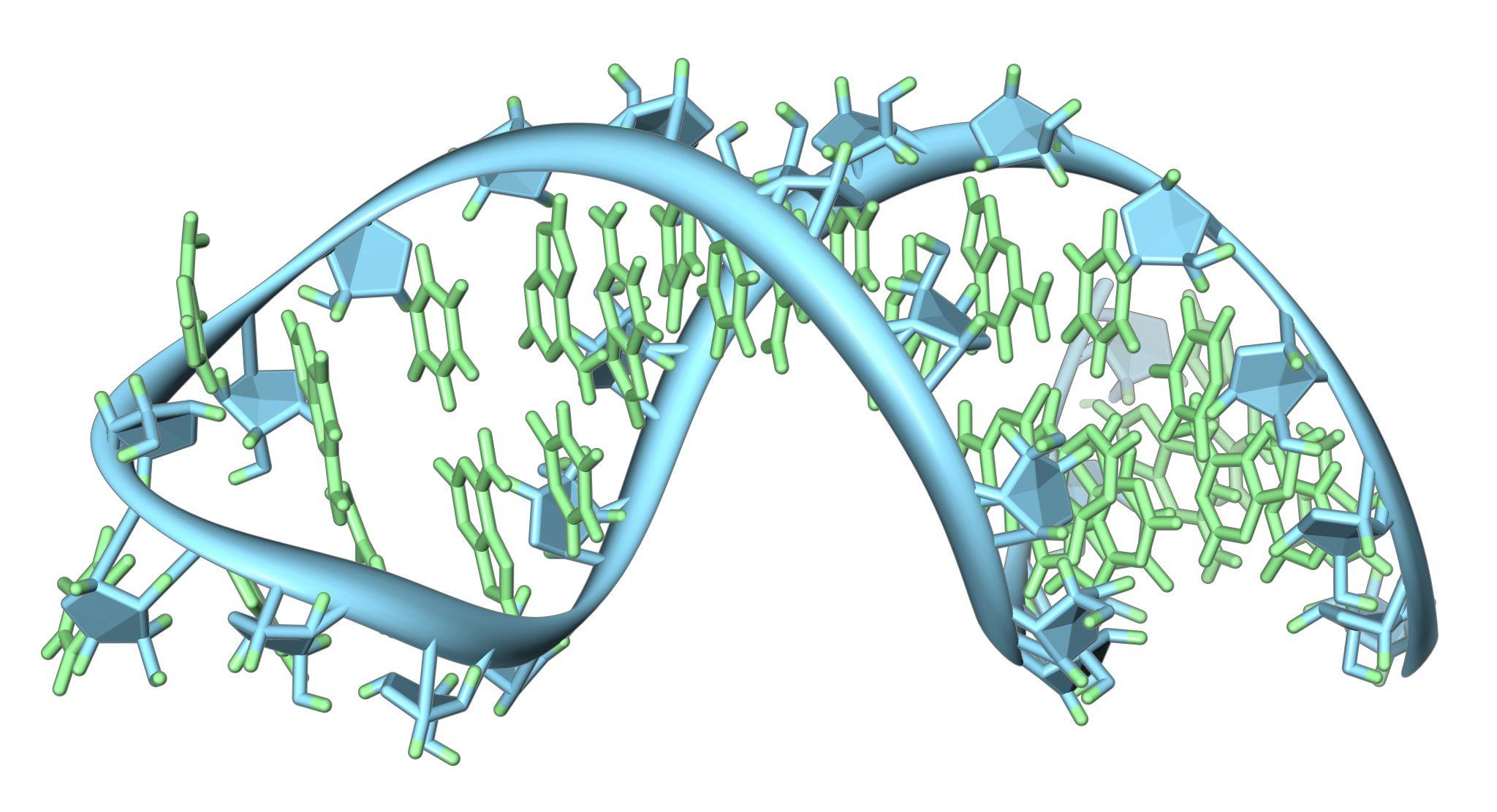 CRISPR used to edit RNA