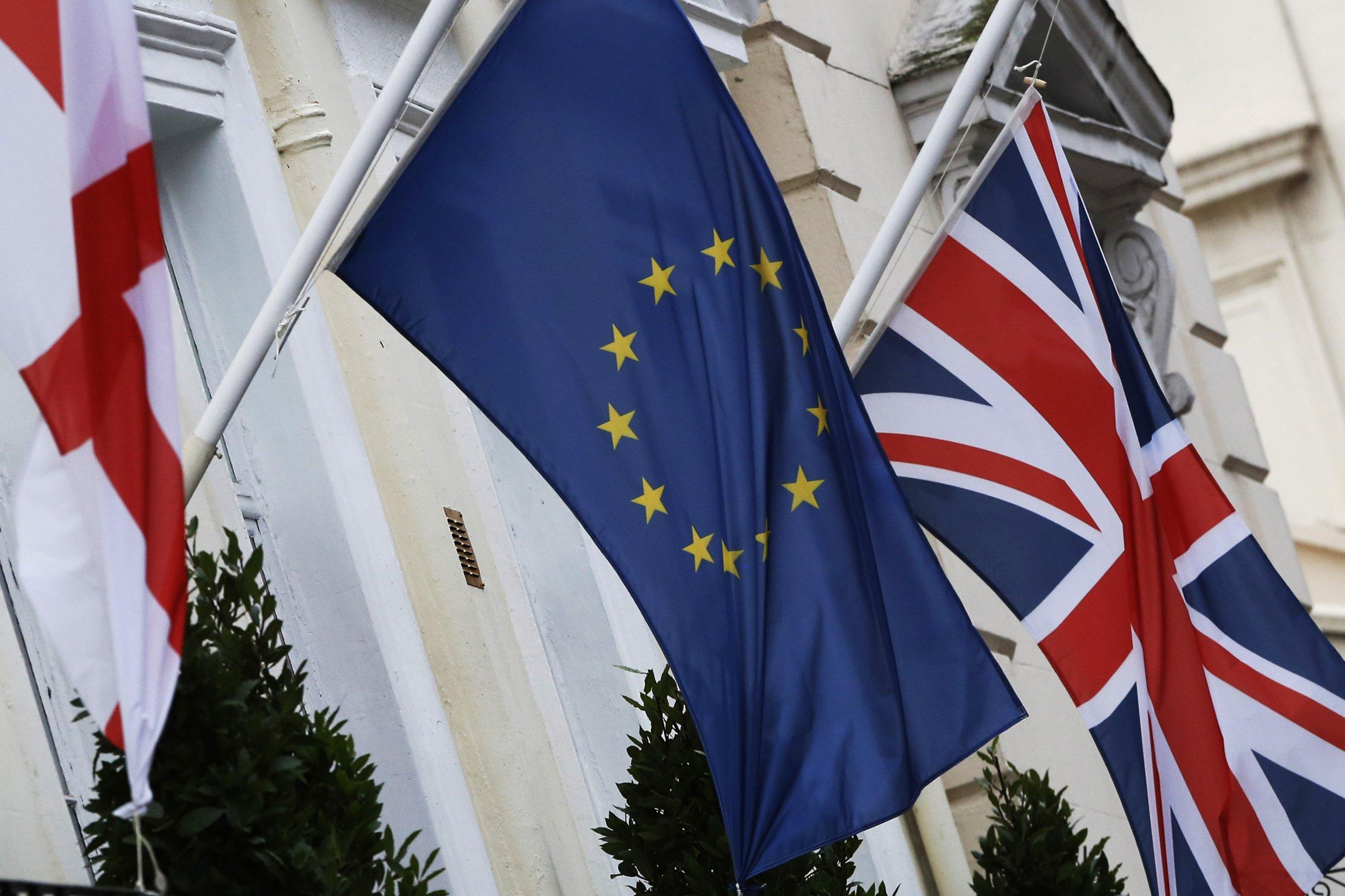 EU Referendum Flag