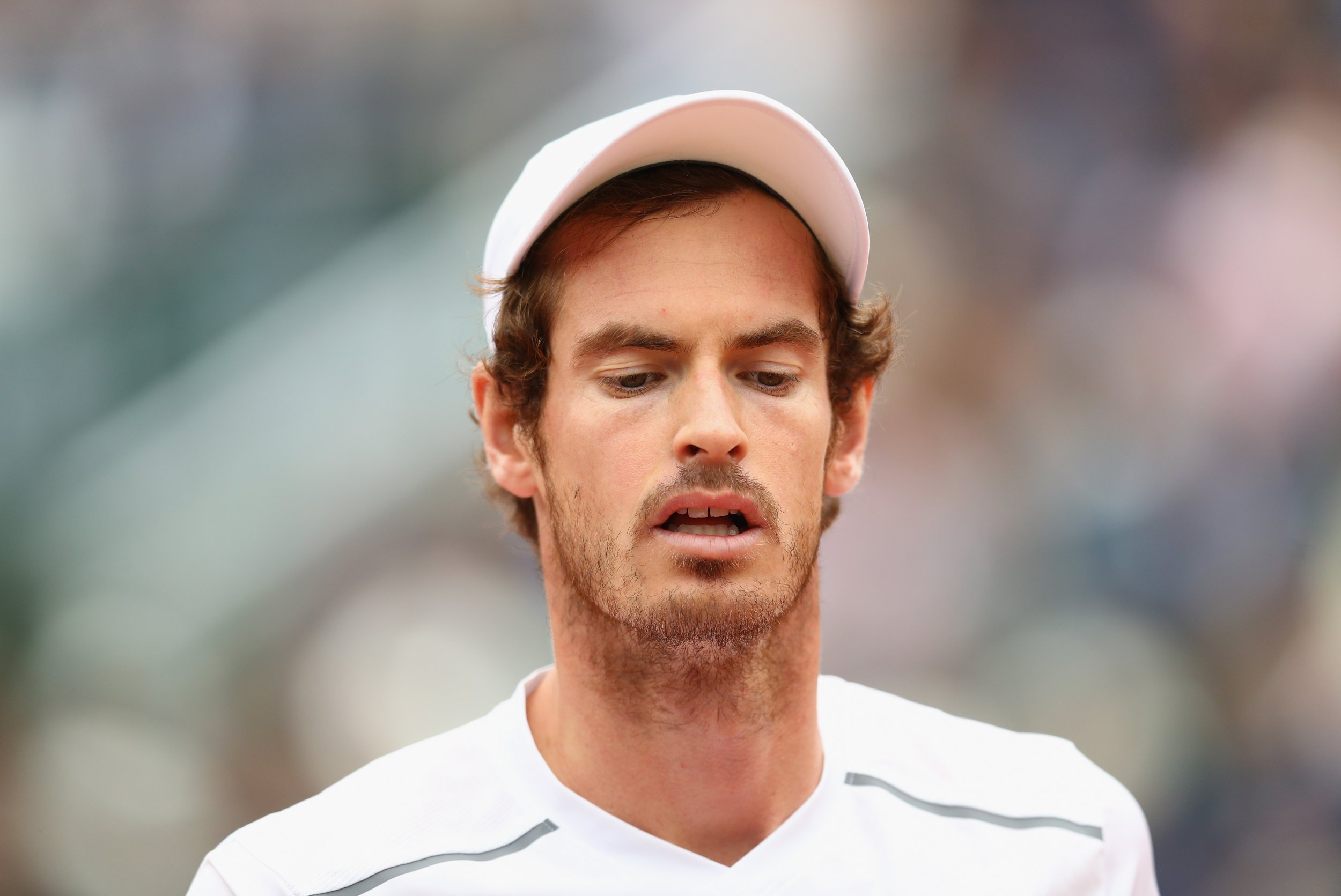 British number one tennis player Andy Murray.