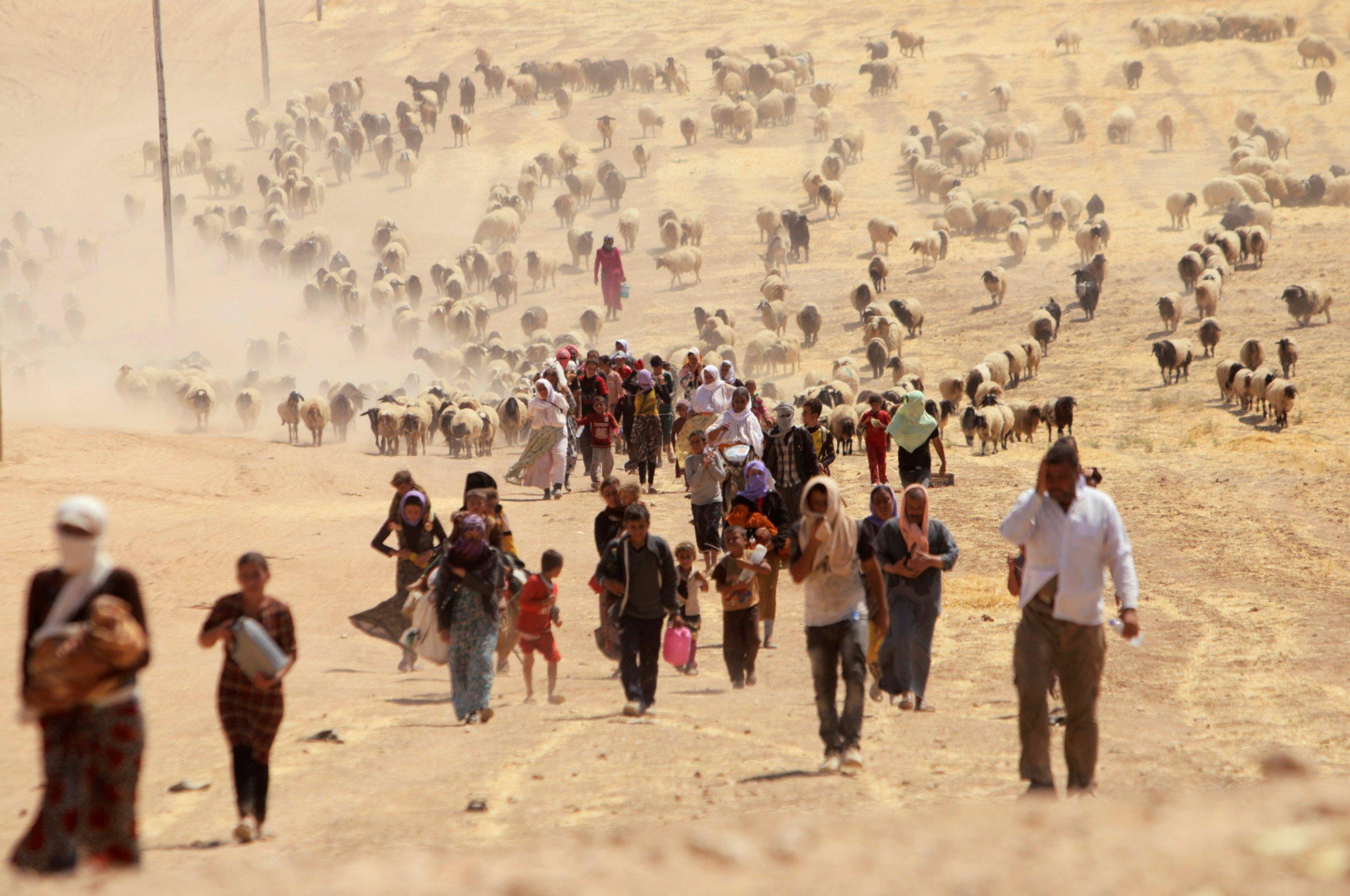 Iraq Yazidi Hostages