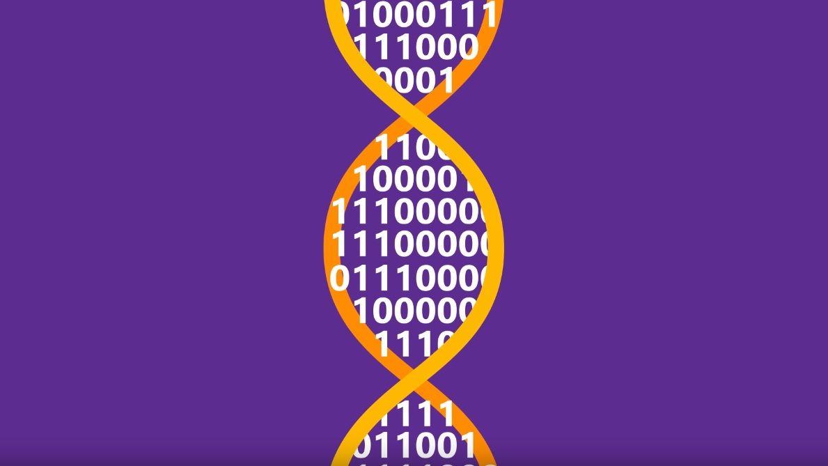 dna data storage microsoft research
