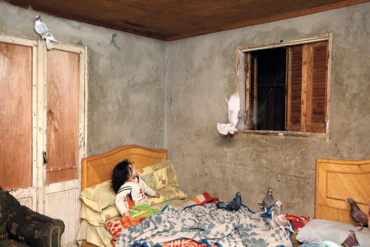 Girl in bedroom with pigeons, Egypt, 2011.