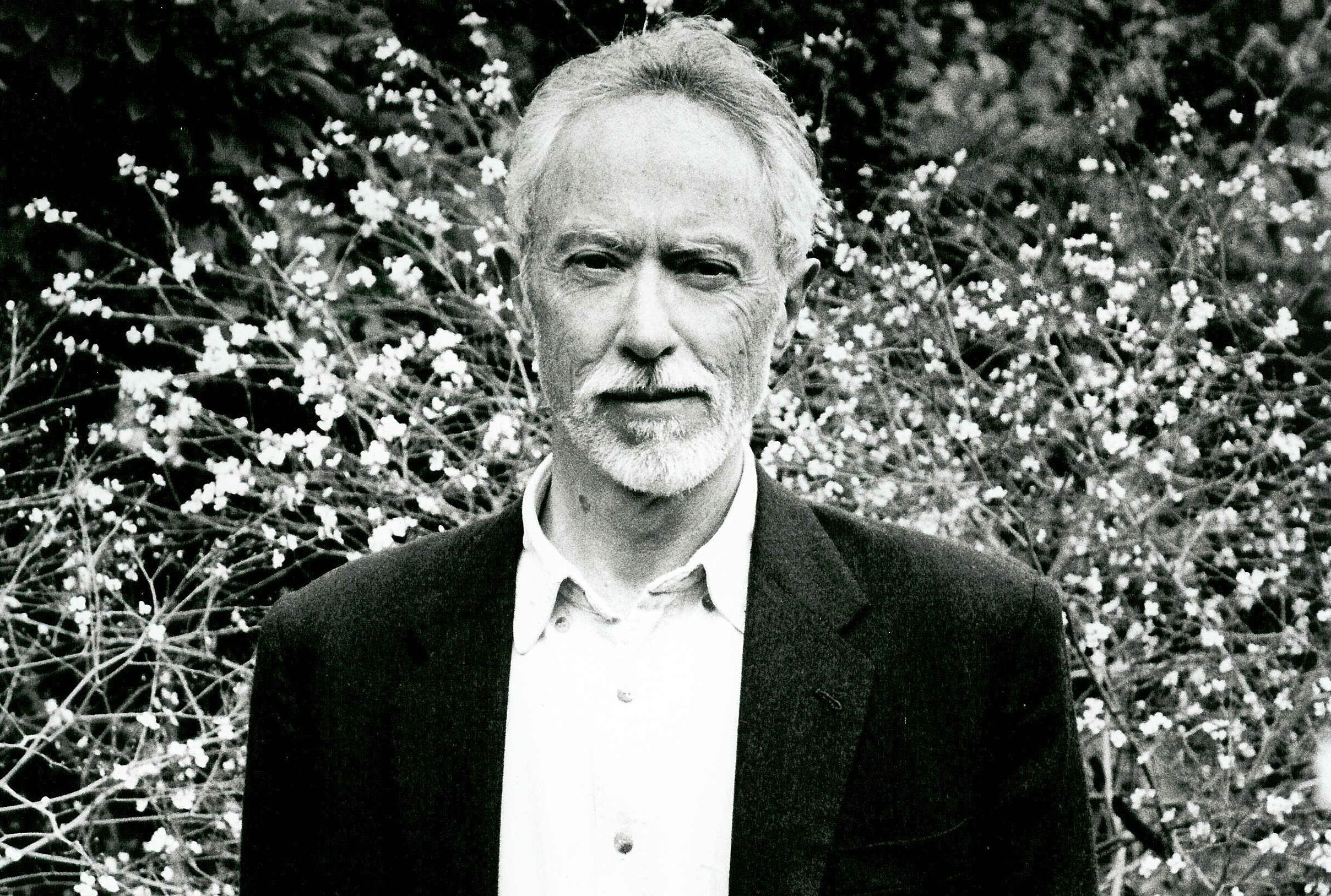 jm coetzee Jm coetzee's translation of this novel about a woman living inside a hollow tree is a mysterious marvel, telling a dreamlike tale of pleasure and boundless pain.