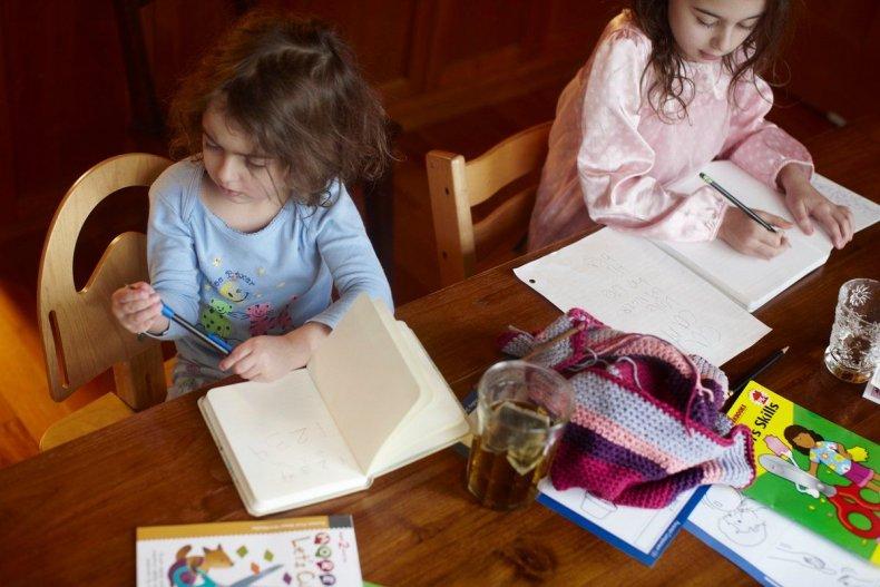 home-schooling-fe04-perlstein-2ndary
