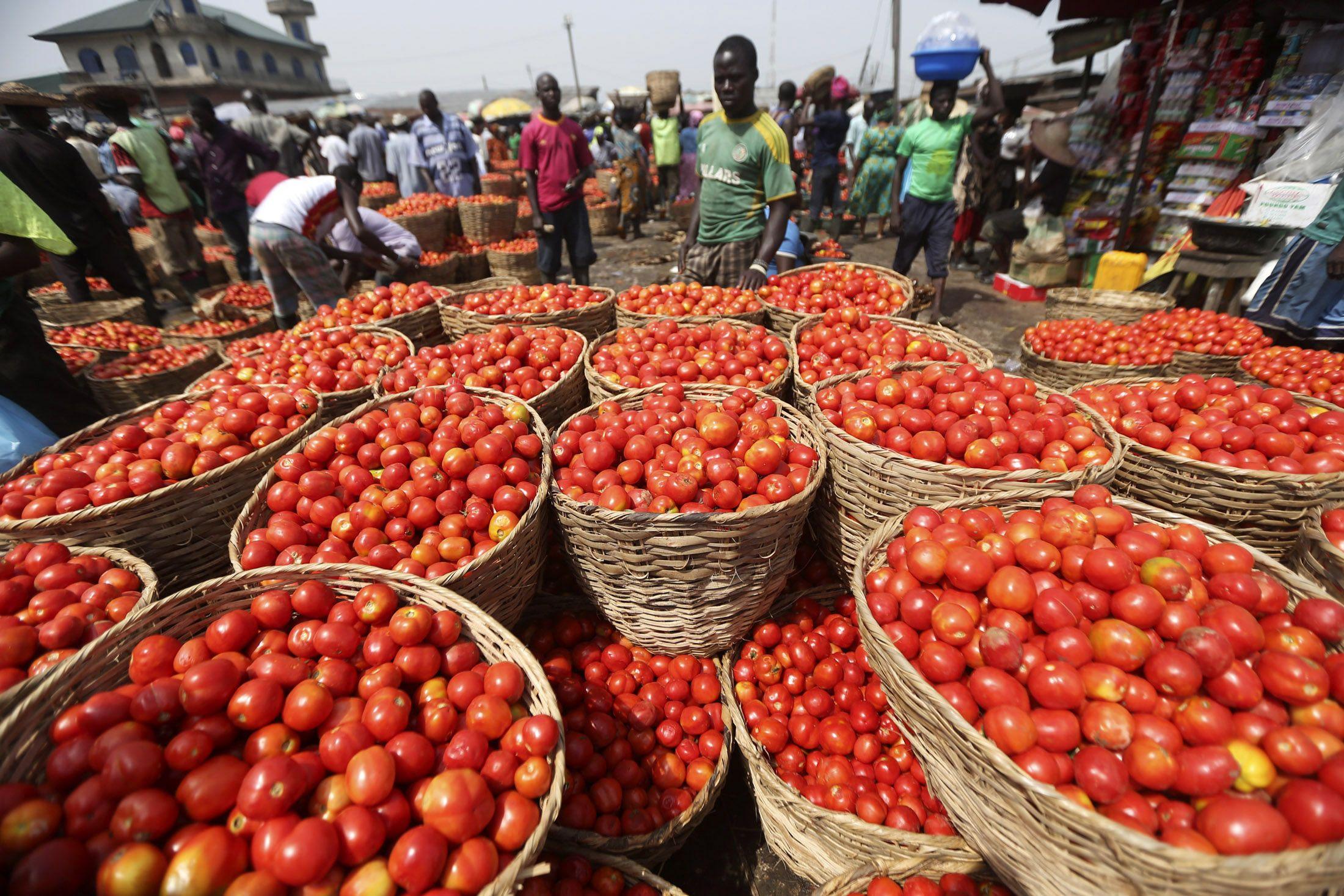 Lagos tomato market