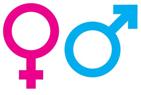 Gender Fluid Skronk And Fuhgeddaboudit Enter Oxford English Dictionary