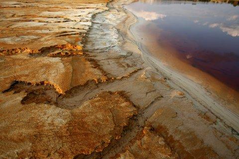 Polluted water fills a dam near Johannesburg