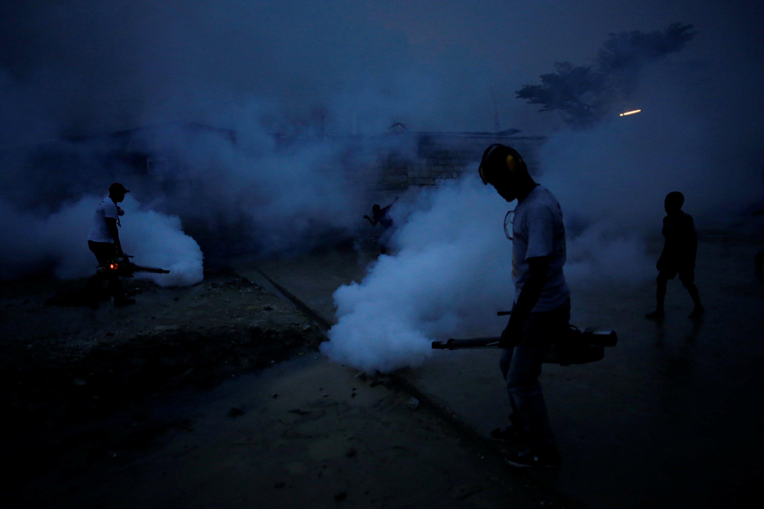 Zika Looms
