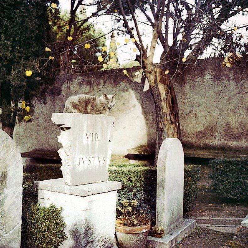 100-places-travel-non-catholic-cemetery