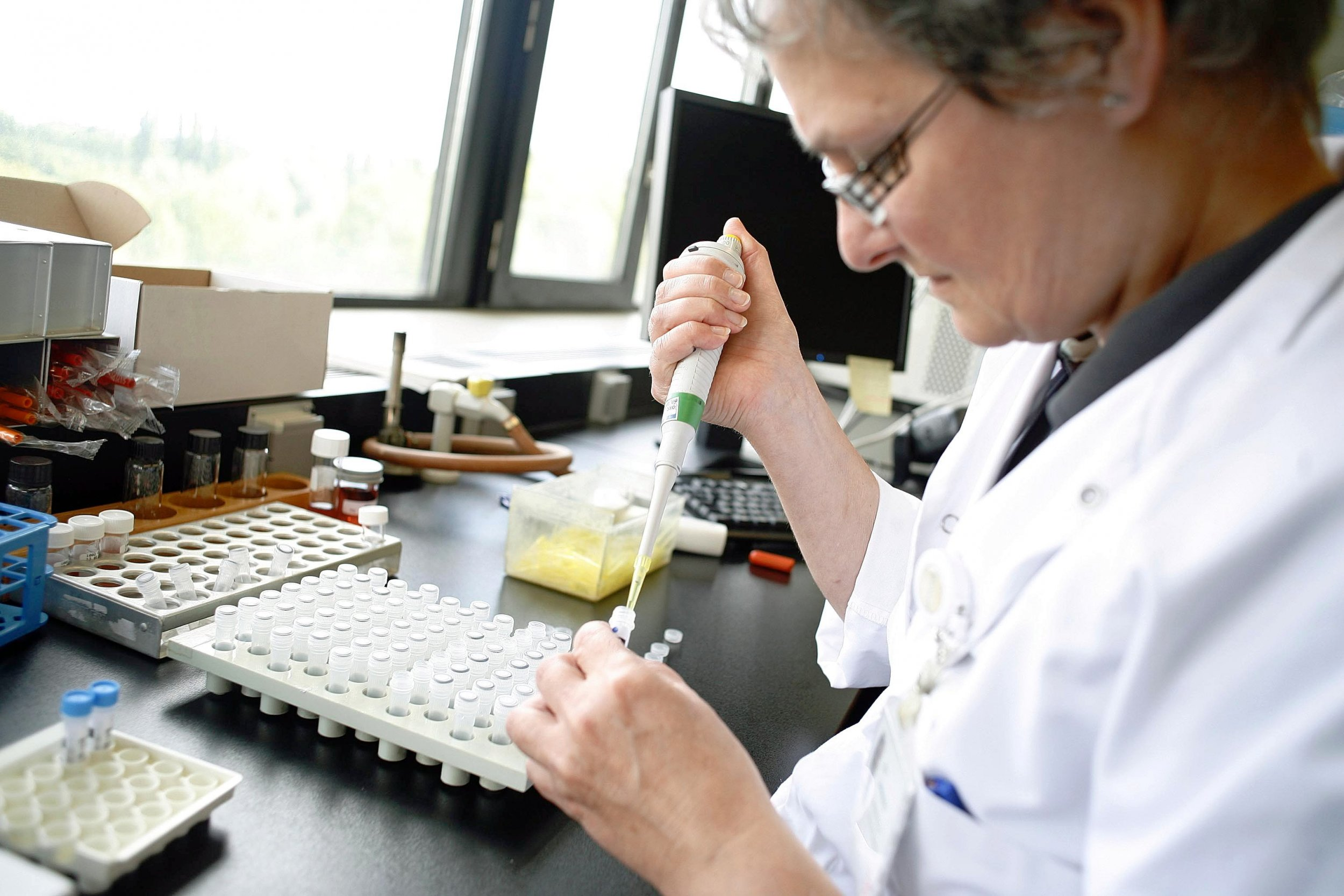 A researcher at a microbiology lab