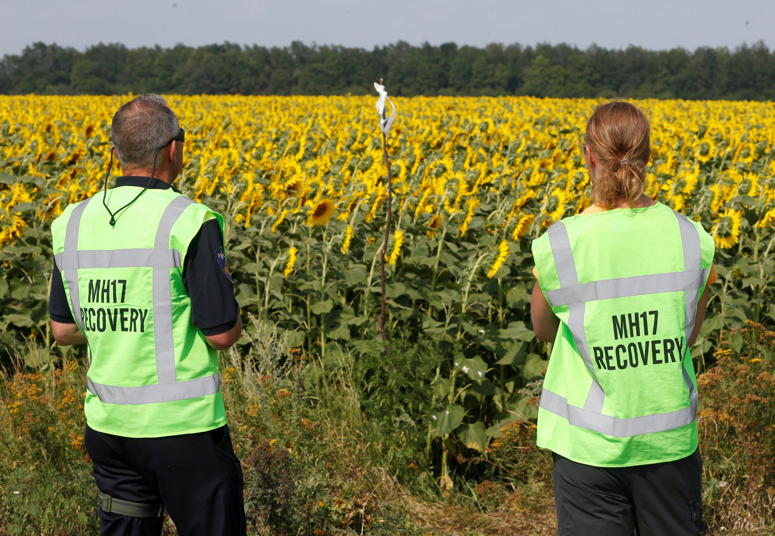 MH17 forensic experts