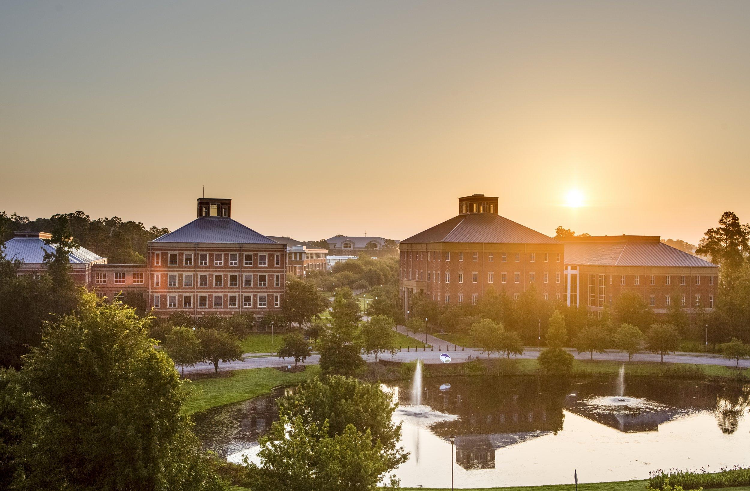 Georgia Southern University pic