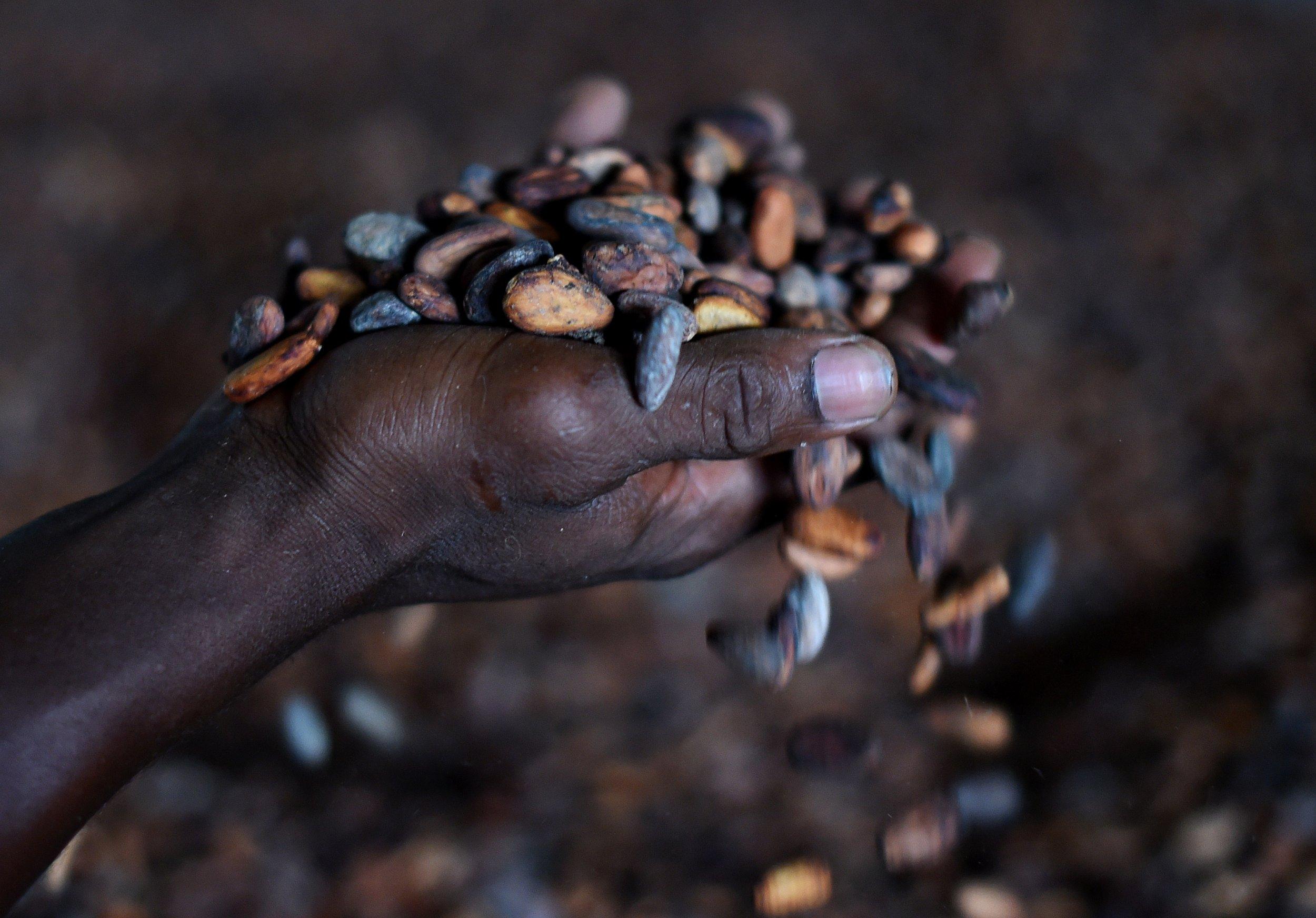 Sierra Leone industry