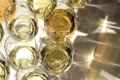 wine-makers-OV20