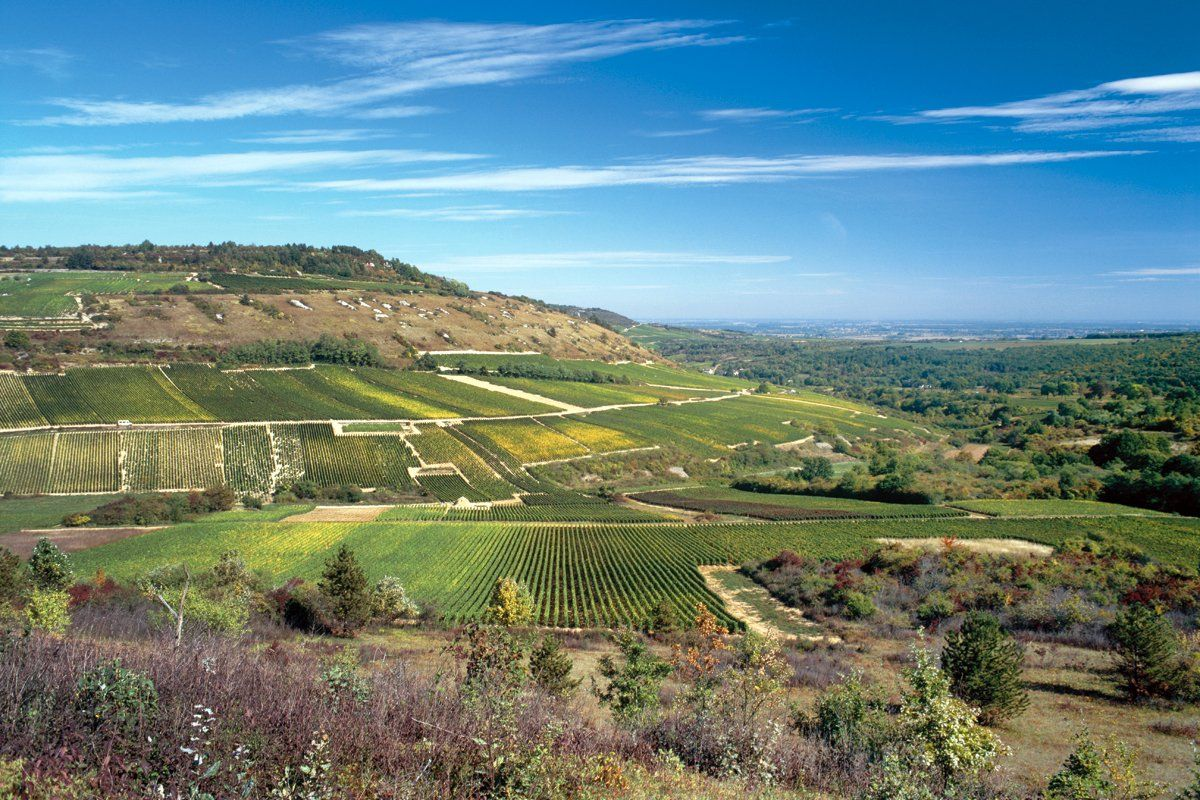 Hautes-Cotes de Bourgogne