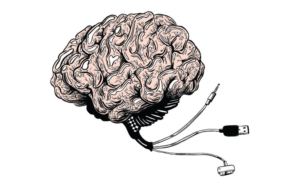 brain-nb52