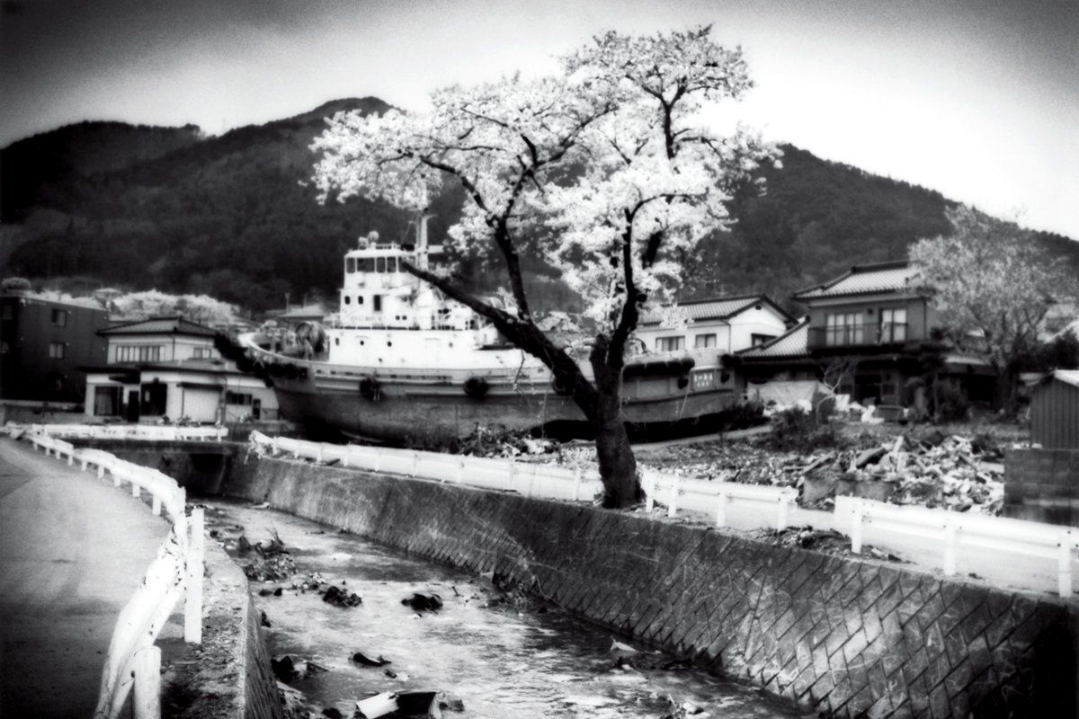 japan-cherry-blossoms-after-the-tsunami-james-whitlow-delano-photos-tease