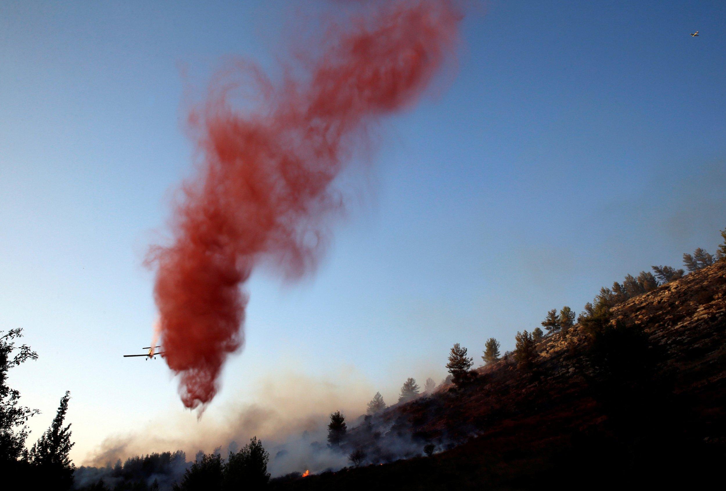 Israel brushfire