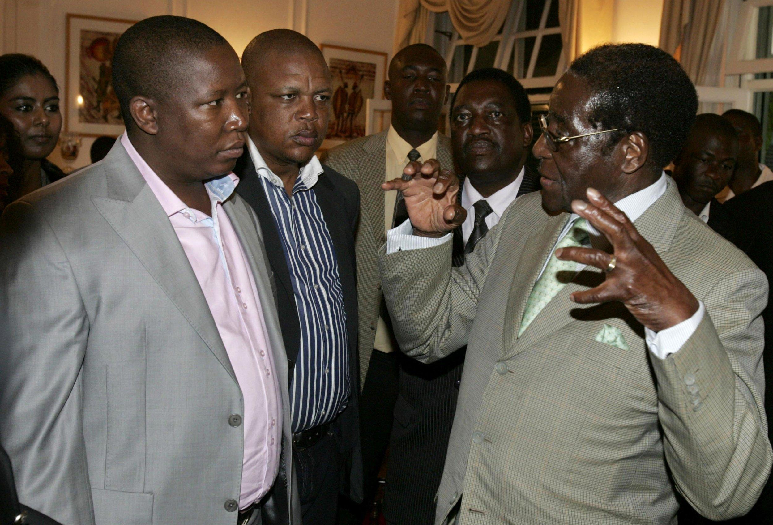 Malema and Mugabe
