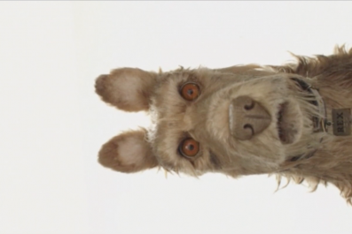 12-21-16 Wes Anderson Isle of Dogs