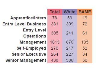 UK Music diversity study - white vs BAME employees