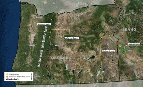 oregon-creeping-bentgrass-map