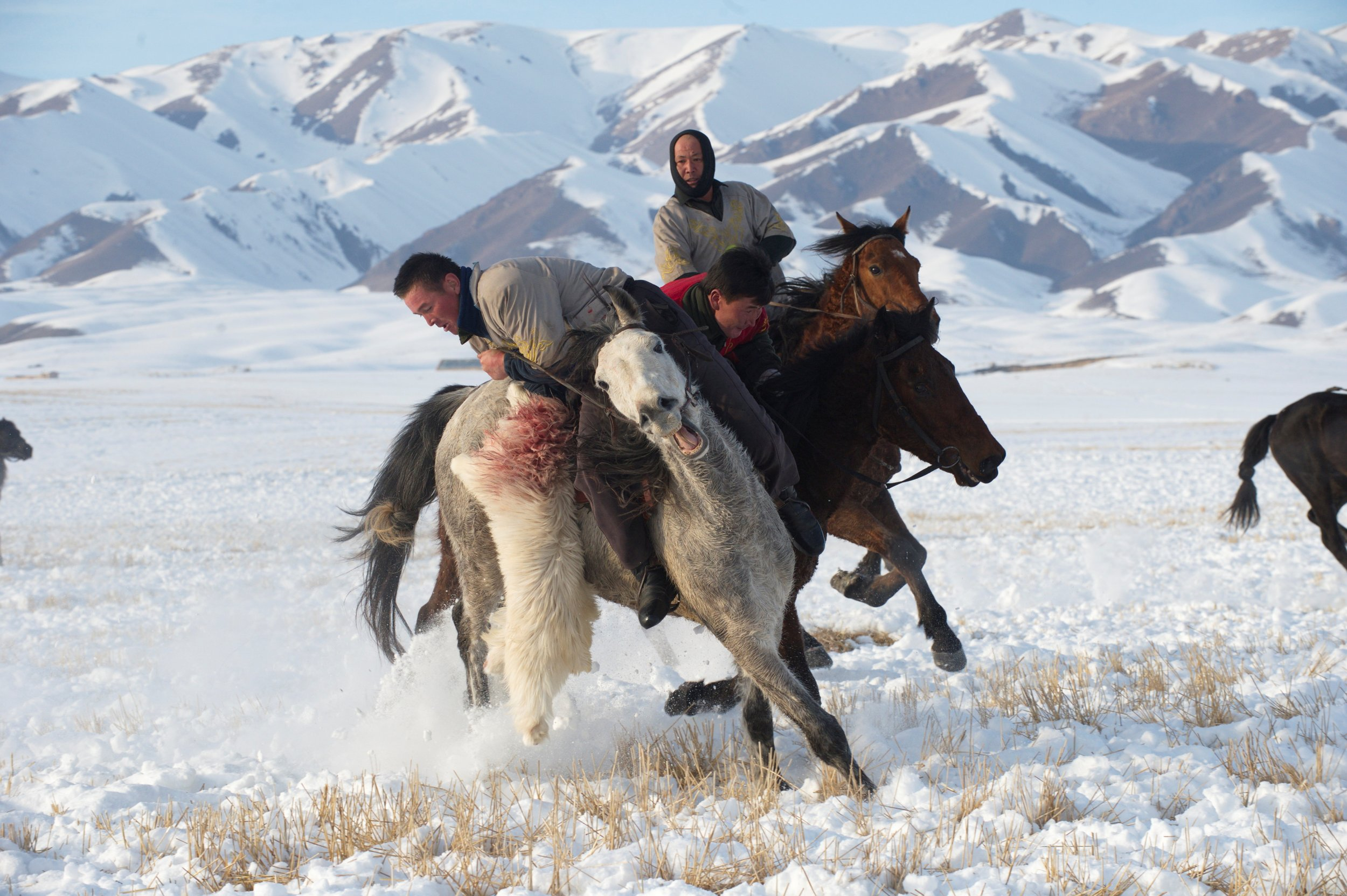 Herders riding in the snow