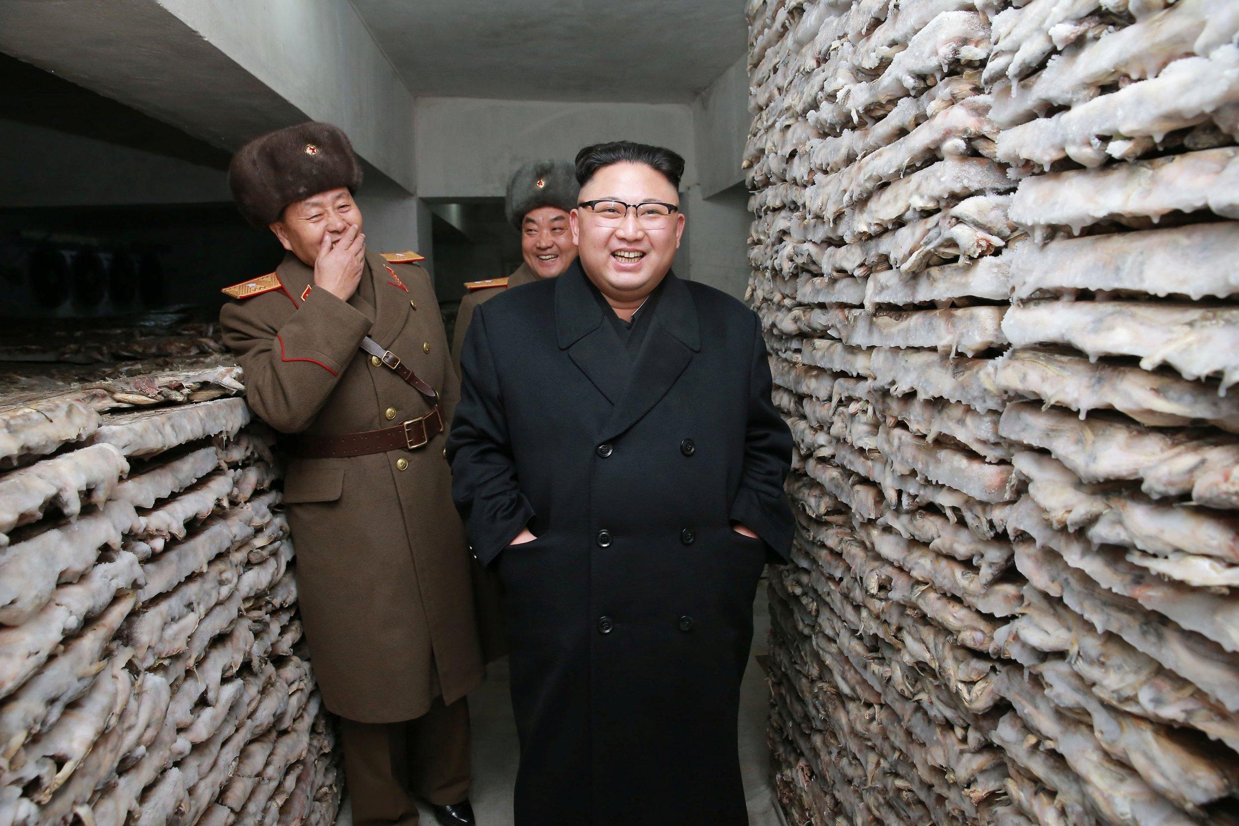 Kim Jong Un inspects army