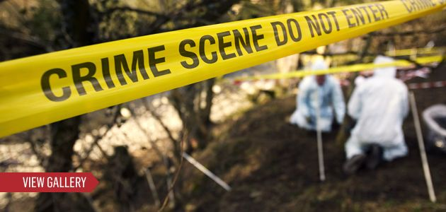 Csi Backlash Forensics On Trial