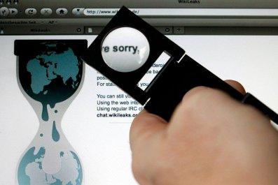 wikileaks-search-hsmall