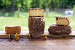 cheese-good-life-tease