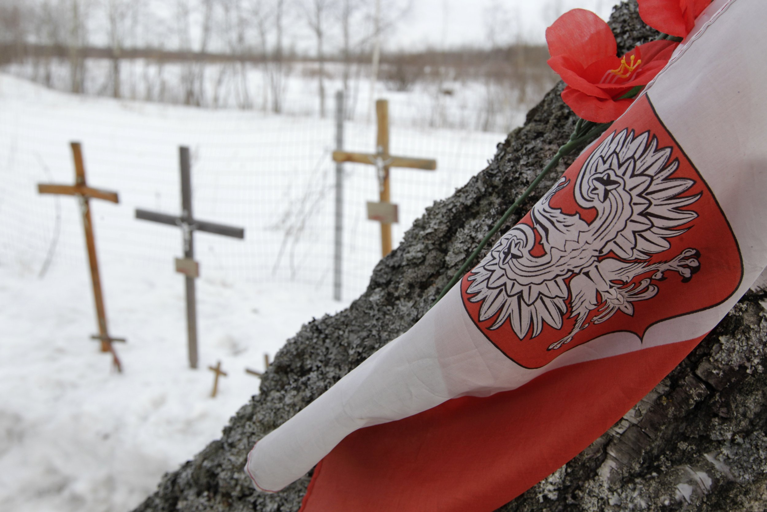 Smolensk air crash 2010