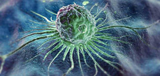 Stem cells,x-default