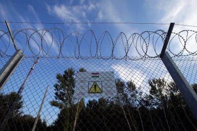Hungary refugee fence