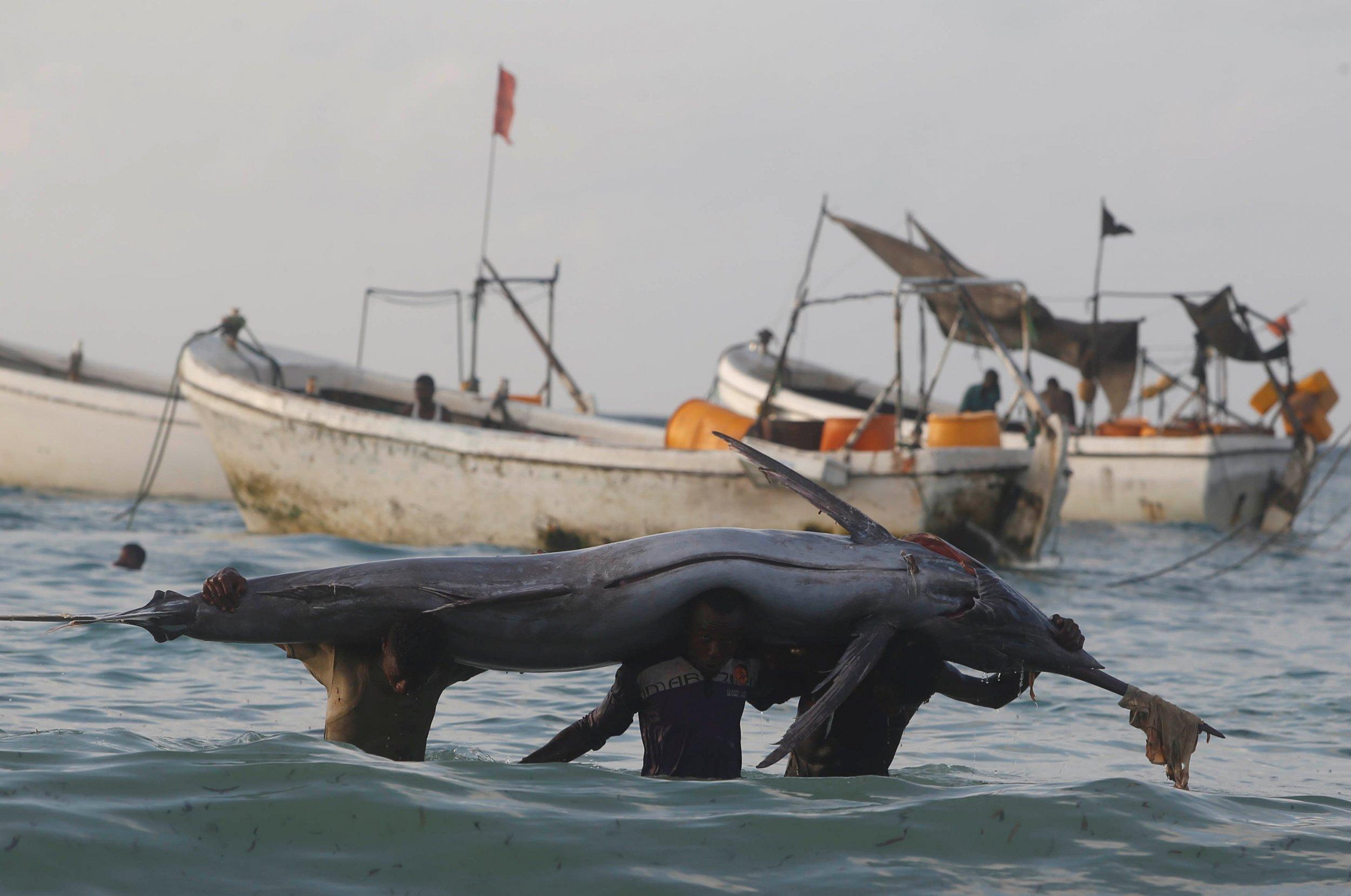 Piracy in Somalia