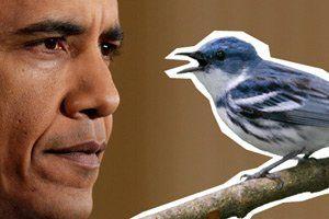 obama-twitter-tease