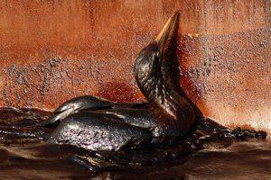 APTOPIX Gulf Oil Spill,x-default